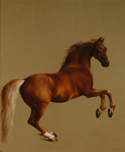 """Whistlejacket"" by George Stubbs (1762)"