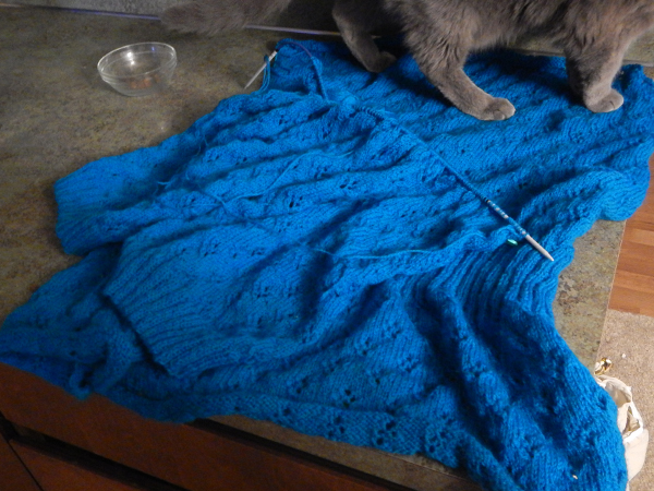 Back and sleeves of sweater (with ever helpful cat)