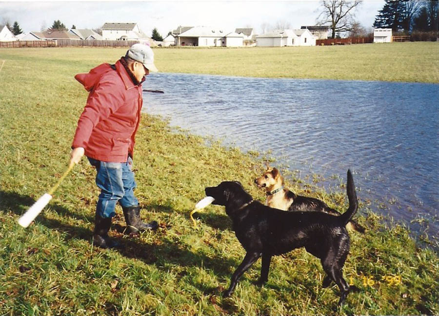 The dogs and my dad playing in a big mud puddle in the field in back of the house (before the church was built.)