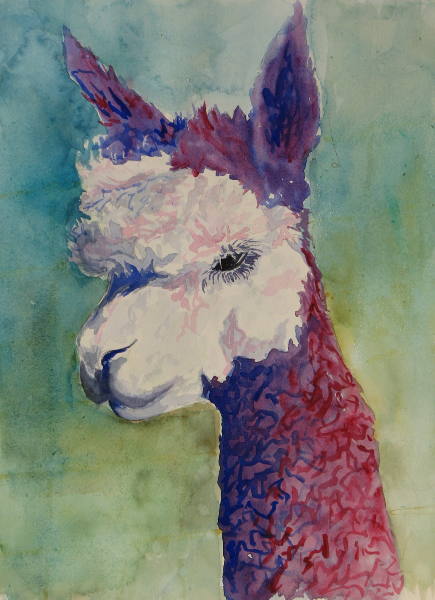 Purple Alpaca