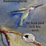 Class: Writing & Illustrating Children's Books (Week 4-5)